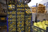 KONTROL NOKTASI - Türkiye'de Yetişen Sebze Ve Meyveler Irak Piyasasının Vazgeçilmezi