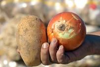 FİYAT ARTIŞI - Tüketiciye Patates Ve Soğandan Bir Kötü Haber Daha