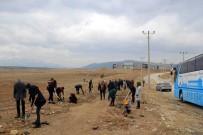 ORGANİZE SANAYİ BÖLGESİ - Beyşehir OSB'de Fidan Dikim Etkinliği