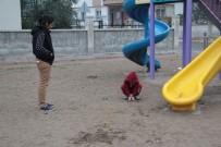 KÖPEK - Çocuk Parkında Dehşete Düşüren Hayvana İşkence Kalıntıları