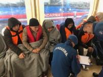 MÜLTECI - Afgan kadın 44 kişinin hayatını kurtardı
