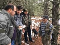 AVCILIK - Afyonkarahisar'da Kaçak Avcılara Ceza Kesildi