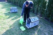 YOĞUN BAKIM ÜNİTESİ - Kahramankazan Belediyesi Doğaya Hayvanlar İçin Mama Ve Yem Bırakıyor
