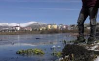 GÜRCISTAN - Nehir Buz Tuttu