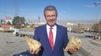 KAYSERİ ŞEKER FABRİKASI - Kayseri Şeker Özelleştirmenin Yüz Akı
