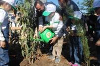 ŞELALE - Ordu'da 'Minik Eller Çiftliği Projesi'