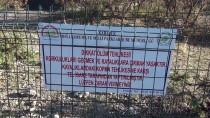 Safranbolu'daki 'Taş Teras' Kayaya Çıkış Yasaklandı