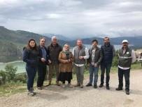19 MAYıS - Akademisyenler Samsun'un Geleneksel Tıbbi Bilgi Haritasını Çıkardı