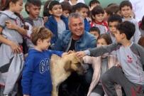SOKAK KÖPEĞİ - Belediye Başkanı, MAYDER Üyeleriyle Birlikte Hayvan Barınağında Temizlik Yaptı
