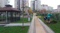VEYSEL KARANI - Gebze'deki Parklarda Kışa Hazırlık Başladı