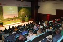 YABANCI ÖĞRENCİLER - YTB Başkanı Eren Açıklaması 'Göç Ve Mültecilik Dünyanın En Büyük Sorunudur'