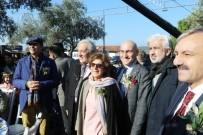 HÜRRIYET GAZETESI - Akhisar'da Dünya Zeytin Günü Kutlandı