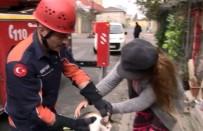 ORHANLı - (Özel) Elektrik Direğine Çıkan 'Kırçıl'ı İtfaiye Ekipleri Kurtardı