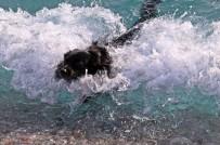 SOĞUK HAVA DALGASI - Antalya'da Kasım Sonunda Deniz Keyfi