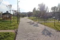YENI CAMI - Zara'da 'Millet Bahçesi' Açıldı