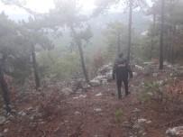 Avlanmak İçin Evinden Çıkan Avcı Ormanlık Alanda Ölü Bulundu