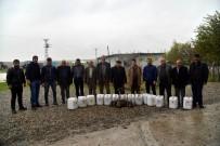 ORGANIK TARıM - Büyükşehir'den Çiftçilere Fidan Ve Gübre Desteği