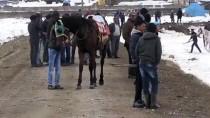 BAŞKÖY - Cirit Atlarının 'Kar Üstündeki Dansı' Başladı