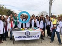 DİYABET HASTASI - Aydın'da Tıp Öğrencileri 'Sağlık Turnesi'ne Çıktı