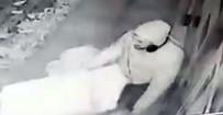 MEHMET SIYAM KESIMOĞLU - Duyarlı Vatandaş Sokak Köpeğini Montuyla Isıttı