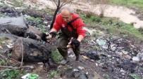 Mahsur Kalan Yavru Köpekleri İtfaiye Ekipleri Kurtardı
