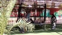 CAROLINA - Mısır'da 'Güzel Vaha' Zihinsel Engellilerin Umudu Oldu
