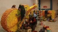 ÖZEL TASARIM - 6. Uluslararası Mersin Narenciye Festivali Hazırlıkları Başladı