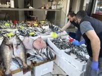 BALIK FİYATLARI - Hamsi 5 Liraya Kadar Düştü