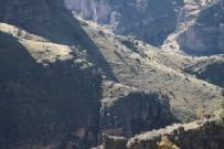İTFAİYE ERİ - Kayalıklarda Mahsur Kalan Keçiler Kurtarılıyor