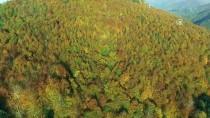 YAMAÇ PARAŞÜTÜ - Nebiyan Dağı'nda Sonbahar