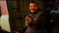 MAHSUR KALDI - Tatvan'da Kedi Kurtarma Operasyonu