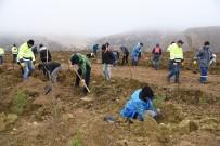 OSMANGAZİ ÜNİVERSİTESİ - Madenciler, Öğrenciler Ve Ormancılar El Ele Fidan Dikti