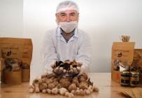 KATKI MADDESİ - Alzheimer Ve Kanser Hastalıklarının Önleyicisi 'Siyah Sarımsak' Avrupa'ya İhraç Edilecek