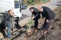 ERCIYES - Özdoğan, Amacımız Daha Yeşil Bir Hacılar