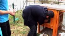 BOTANİK BAHÇESİ - Tavuklarından Ayrı Kalamayan Öğrenci İçin Okula Kümes Yapıldı