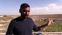 Tel Abyadlılar Evlerine Kavuşacakları Günün Hayalini Kuruyor