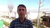 'Anadolu Aslanı'na Dünyanın Dört Bir Yanından Talep Geliyor
