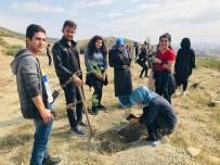 ORMAN GENEL MÜDÜRLÜĞÜ - KYK Öğrencileri Bin Fidanı Toprakla Buluşturdu