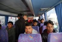 MİNİBÜS ŞOFÖRÜ - Tekirdağ'da 24 Kaçak Yakalandı