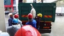 12 Ton 996 Kilo Uyuşturucu Fabrika Kazanında İmha Edildi