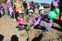 OKSİJEN KAYNAĞI - 'Fidanlar, Fidanlarla Büyüyor' Projesi Kapsamında 400 Fidan Toprakla Buluştu