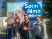 ÖZLEM ÇERÇIOĞLU - Hayvanseverlerden Büyükşehir Belediyesine Teşekkür