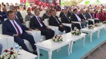 İZMİR MİLLİ EĞİTİM MÜDÜRÜ - İzmir'de 461 Bin Fidan Dikilecek