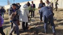 Kaman'da Öğrenciler, 300 Fidanı Toprakla Buluşturdu