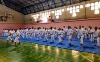 KARATE - Karateciler Dan Seminerinde Ter Döktü