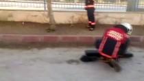 TURGUT ÖZAL - Okul Bahçesindeki Yılan İtfaiye Ekiplerince Yakalandı