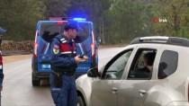 Şile'de Yaşanan Hayvan Vahşetine Jandarma'dan Özel Ekip
