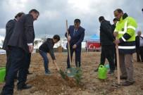 Sinop'ta 'Fidanlar, Fidanlarla Büyüyor' Etkinliği