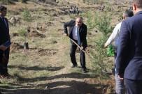 AFYONKARAHİSAR VALİSİ - Şuhut'ta 500 Fidan Toprakla Buluştu