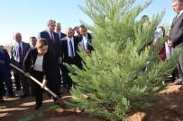 Uşak'ta 'Fidanlar Fidanlarla Büyüyor' Projesi İle 2 Bin 500 Fidan Dikildi